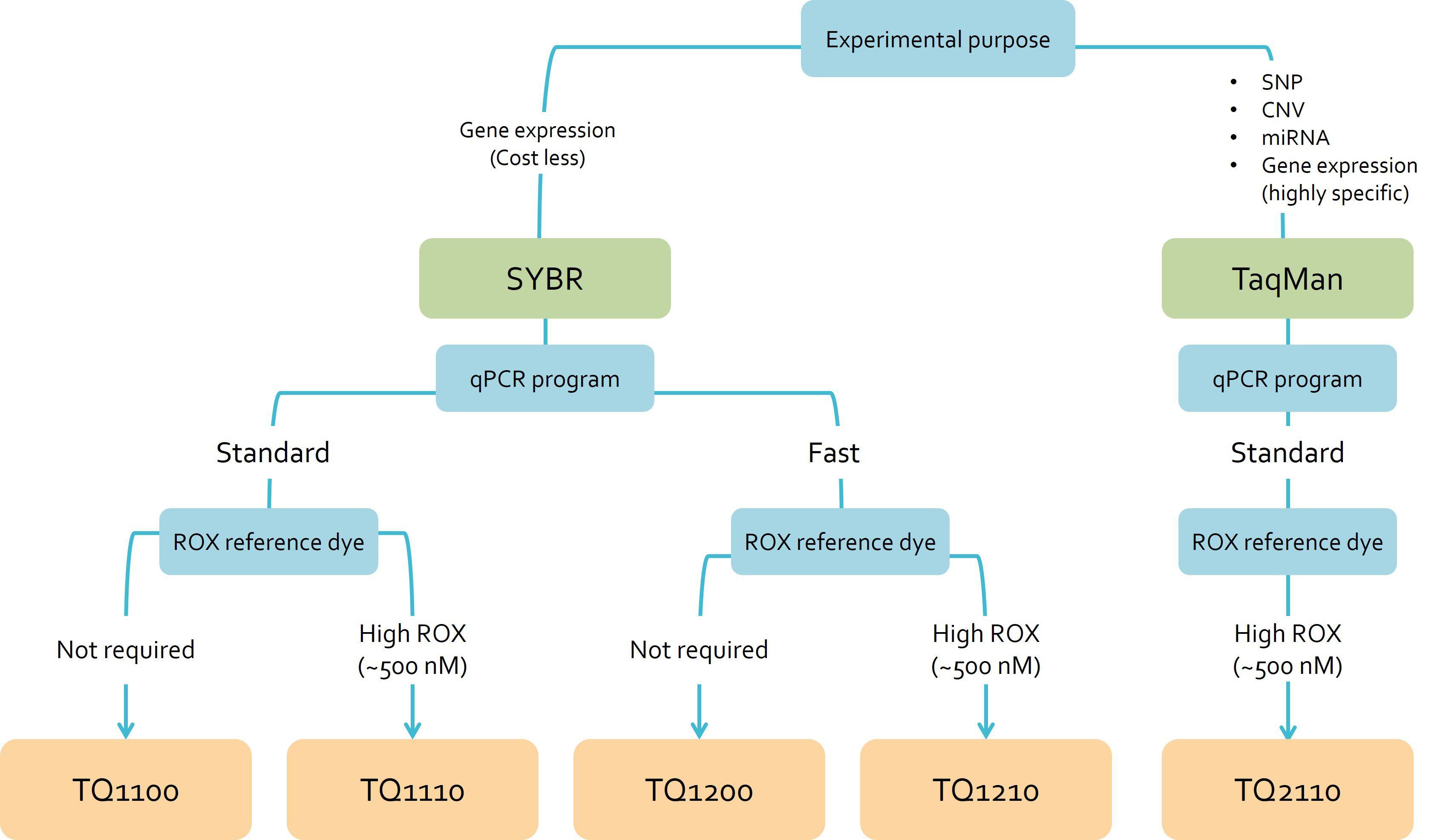 [TQ1210] ExcelTaq™ 2X Fast Q-PCR Master Mix (SYBR, ROX