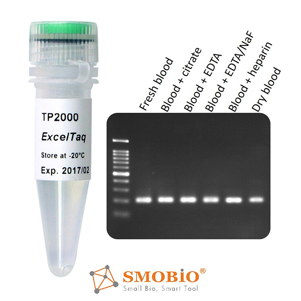 [TP2000] ExcelTaq™ Blood Direct DNA Polymerase, (5 U/μl, 500 U)