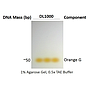 ExcelDye™ 6X DNA Loading Dye, Orange, 5 ml x 2